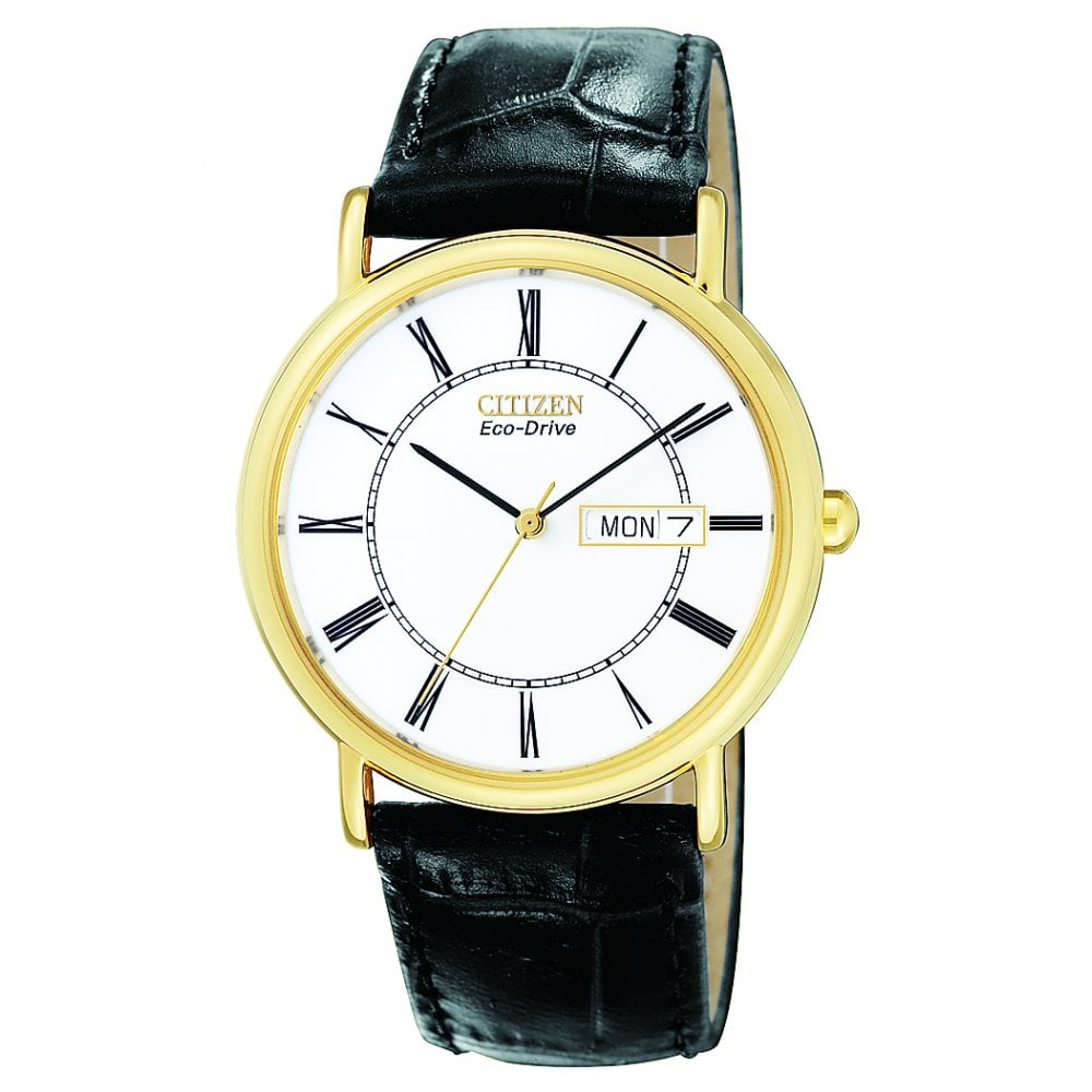 7d6d84ec9c1 Citizen EcoDrive Citizen Eco-Drive Gold Plated Watch with Black ...