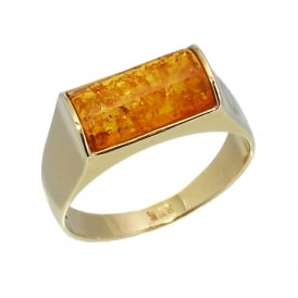 9ct Yellow Gold Amber Ring